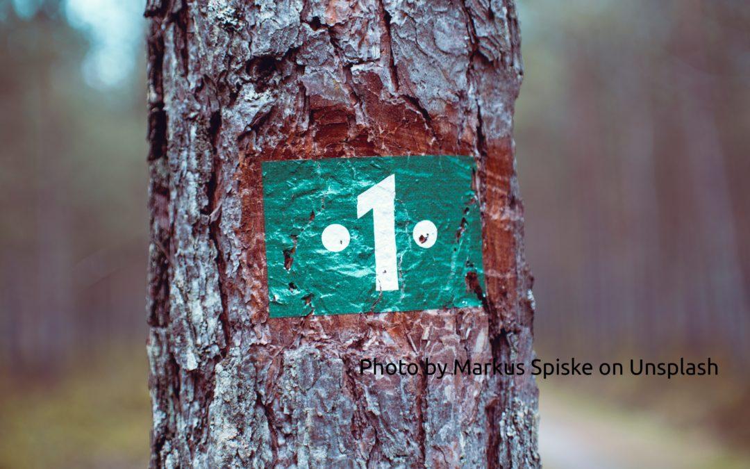 eine aufgemalte 1 auf einem Baumstamm