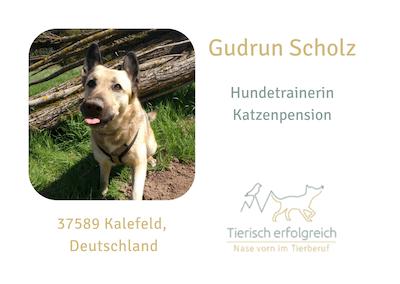 Gudrun Scholz - Hundegerecht – Die Hundeschule - Übersicht