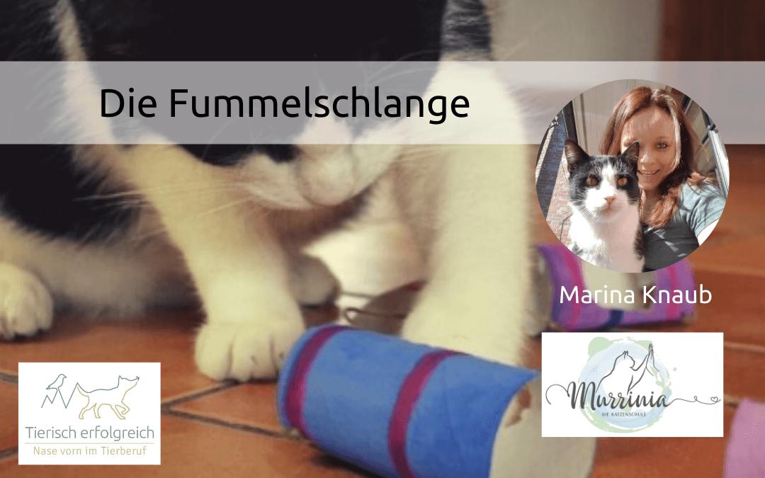 Katzenspielzeug selber machen: Die Fummelschlange